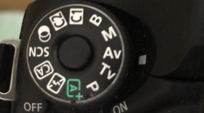 Canon eos 80d 実写レビュー 初めての一眼レフ episode2                      「a v」モード