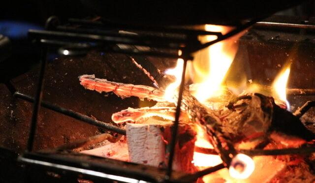 焚き火オススメの薪と隠された「1/fゆらぎ」の癒しの効果